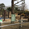 上野動物園 22回目 シャンシャン4回目