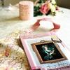 【マリー・アントワネット好き必見!】ヴェルサイユ宮殿監修 初のアイテム付きブック