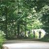 ザ少年倶楽部プレミアムの『NEWSの♪夏旅in軽井沢』があまりにも良すぎて泣いた