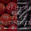 1012食目「トマトとナスは親戚?トマトって柿って呼ばれてた?」夏野菜 トマトの話(あとちょっとナスの話)