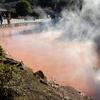 別府地獄めぐり・⑦血の池地獄(4):大分県別府市