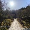 春はすぐそこに北鎌倉東慶寺
