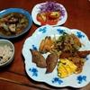幸運な病のレシピ( 2221 )夜 :レバー、鳥手羽、牛肉と茄子の汁