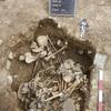 古代アンデス文明で暴力儀礼…頭蓋骨に陥没痕