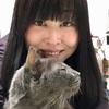 猫の鼻腔内リンパ腫④猫ちゃんsに囲まれて幸せ♡