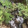 円満寺公園