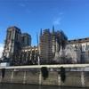 ノートルダム大聖堂まで散歩、某翻訳など