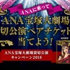 【2018 関西3空港限定】ANAに乗って宝塚歌劇花組公演を当てよう!