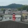 高麗駅~武蔵横手駅 『 横手渓谷を歩く 』