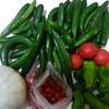 ♡ 旬の野菜達  ♡