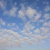 雲フェチの休日~その11『羊雲』