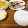 連子鯛の塩焼きを夕食に決定 午前中はメリハリを持って過ごす