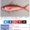鯖でないのに「赤サバ」食べてみた