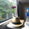【ベトナム旅行記Day.5】ハノイ→ダナンを寝台列車で移動! 思わぬパーティー・ナイトに巻き込まれる