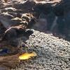 初めての熱帯魚(6)さよなら、ミッキープラティ。