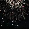 夏の終わりは危険なほど間近で打ち上がる花火で締めくくる~横須賀市西地区納涼花火大会へ行ってきた~