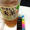★やさしい麦茶