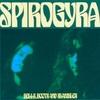 5-6 Spirogyra〜3種の神器(3)〜