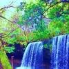 【相棒さんぽ】熊本県小国町にある滝のカーテン!滝の裏に行ける鍋ヶ滝に行ってきた!