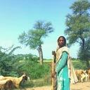The Hindustan