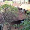 バリ島でホームステイ。注意してほしいこと4つ(ウブド・インドネシア