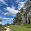 【Perth】キングスパークの芝生でのんびりピクニック
