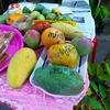 5月9日はタイの「みどりの日」で祭り開催