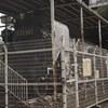 【保存車めぐり】大塚台公園 C58 407号機【その5】