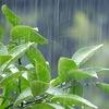 【漫画】からかい上手の高木さん 雨宿りする高木さんと西片くん 第二巻を読んだネタバレ感想&考察(その1)
