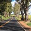オアフ島をレンタカーで一周した感想。アメリカのマクドナルドやハワイコーヒーの聖地巡礼など