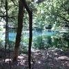 神秘の泉「丸池様」は山形県遊佐町にあった!地元の人も知らない丸池の全て