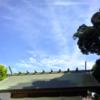 令和初の参拝に行ってきました。- 阿佐ヶ谷神明宮と馬橋稲荷神社