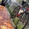 【ロードバイク】外練: 小山田周回 76Kmと87Km