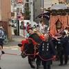 東京・墨田区の牛嶋神社の大祭で、立派な牛を見てきました(^o^)
