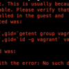 "Vagrant を 立ち上げようとして `Failed to mount folders in Linux guest. the ""vboxsf"" file system is not available.` って出た話。"