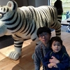 松濤美術館へ行ってきました