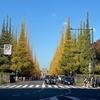 コロナ第三波到来でも不動の一番人気は神宮外苑のイチョウ並木