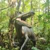 【沖縄に恐竜はいる?】やんばる亜熱帯の森へ行ってきた