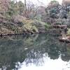 三四郎池(東京都文京)