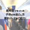 飛行機の中での子供との過ごし方~あると助かる!便利グッズを紹介~