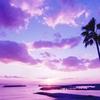 紫色の3つの効果でストレスフリーな恋愛をしてみませんか?