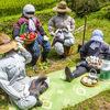 ダンジョン化された農村風景、日本のマチュピチュ『四谷の千枚田(よつやのせんまいだ)』【2020年8月11日追記】