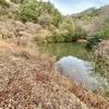 大戸池(愛媛県大三島)