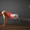 肩の怪我は【腕立て伏せ】で治す!筋トレの怪我予防とリハビリ効果とは?