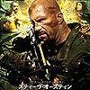 【映画】スティーヴ・オースティン ザ・ハンティング【Hunt to Kill】