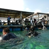 【ポイントまとめ】中国のハワイ、海南・分界洲島でダイビング