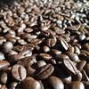 コーヒー豆のエージング2。
