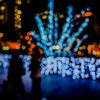 新宿ナイトフォトウォーク 〜広角単焦点レンズで玉ボケ写真〜