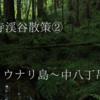 『阿寺ブルーを求めて!阿寺渓谷散策』 ウナリ島~中八丁吊り橋編