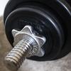 IVANKO製ダンベルで自宅トレーニング。限られた重量で追い込む方法